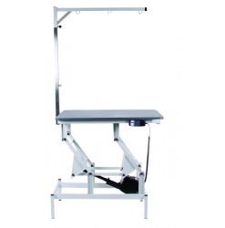 Smart Table Electrique 60x100 Potence Simple