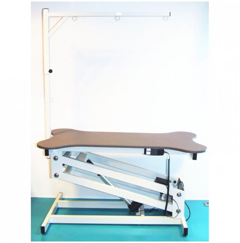 Bone Table Electrique 110x60